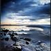 Stones, Crosby beach. Explore