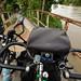 Our Bikes in Vietnam