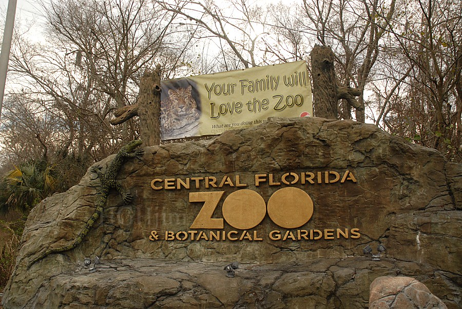 Central Florida Zoo And Botanical Gardens Central Florida Flickr