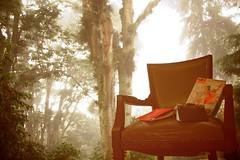 Un lugar para leer / A place to read by gfloreslara
