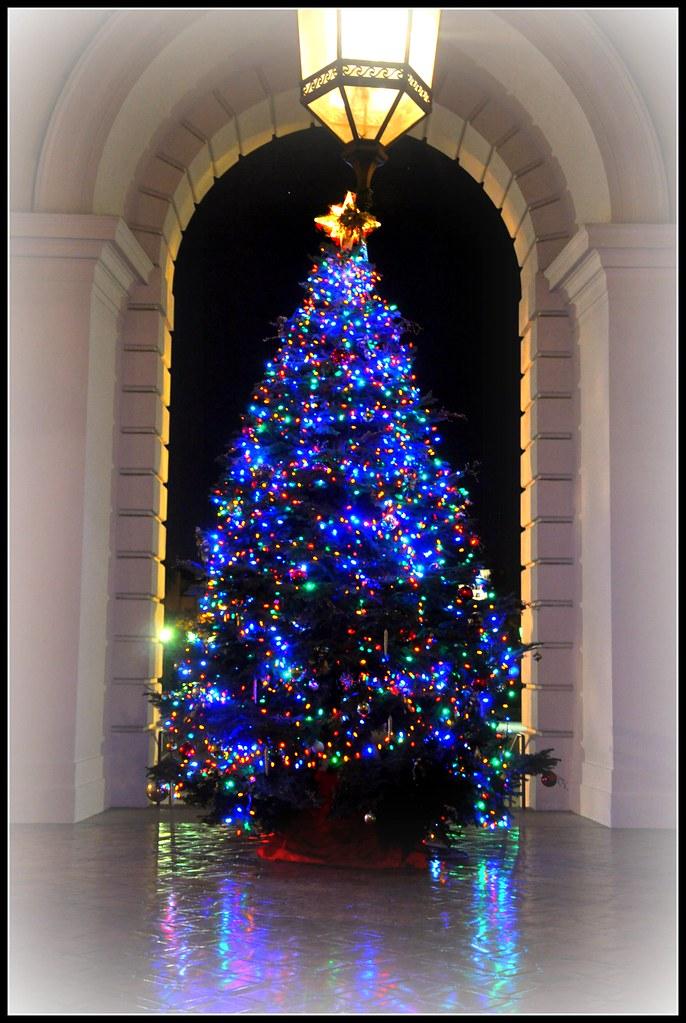 White Trees For Christmas