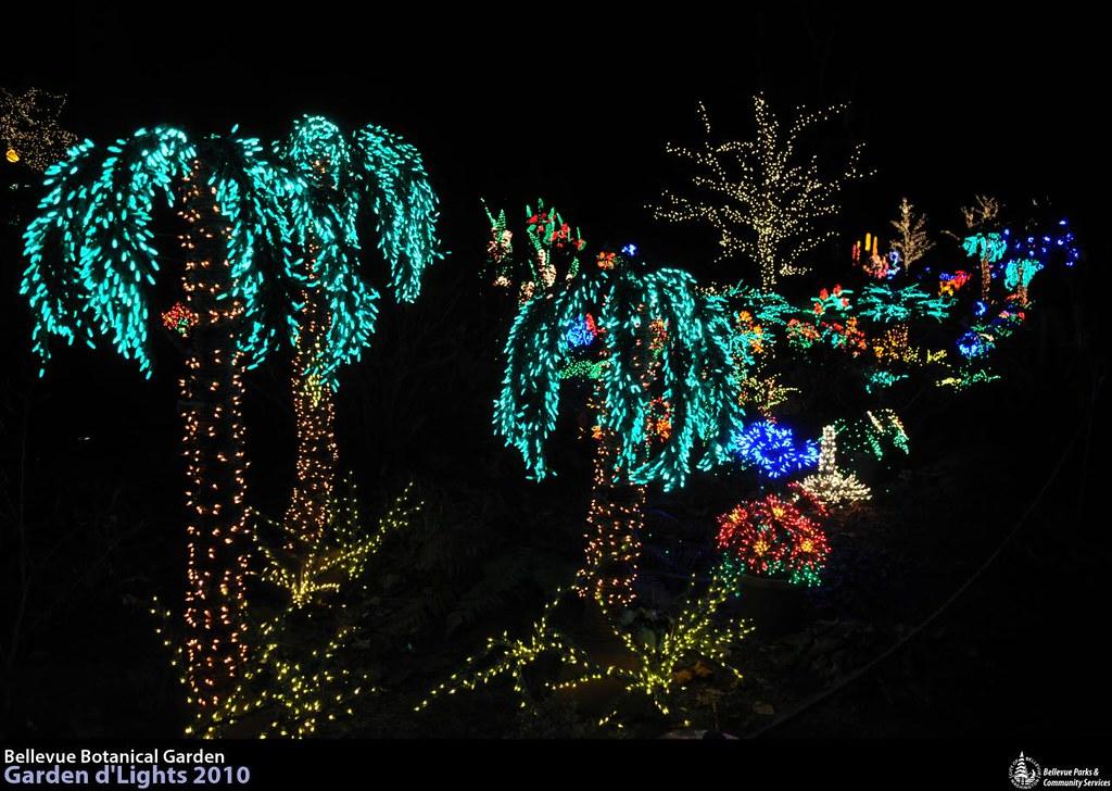Lr 0706 garden d 39 lights at the bellevue botanical garden flickr for Bellevue botanical garden lights