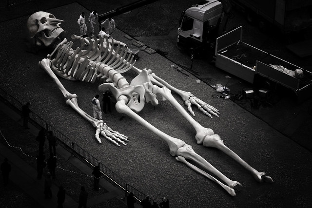 Giant Skeleton | Flick...