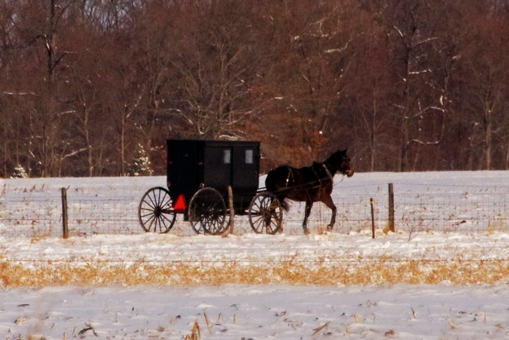 What's the difference between New Order and Old Order Amish?
