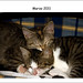 Alice & Ellen - Marzo 2011