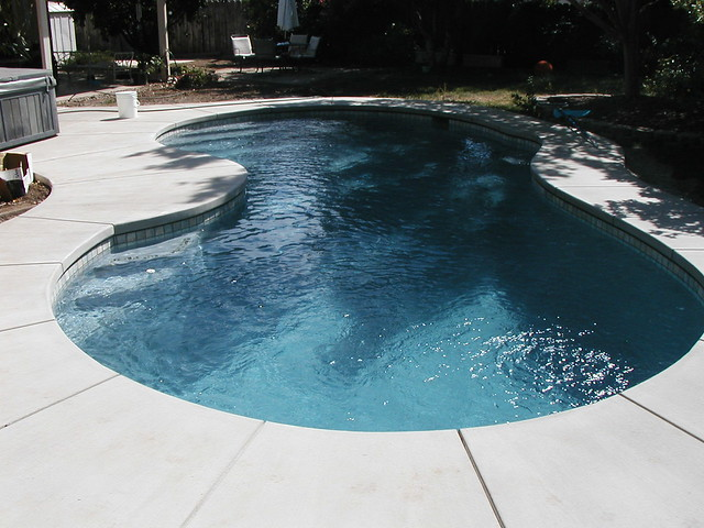 Classic kidney shaped pool flickr photo sharing for Images of kidney shaped pools