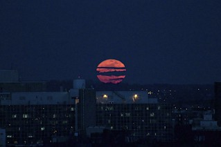 Super Moon Rising Over the Bronx | by vincenzosi
