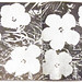 Andy Warhol, interior flowers