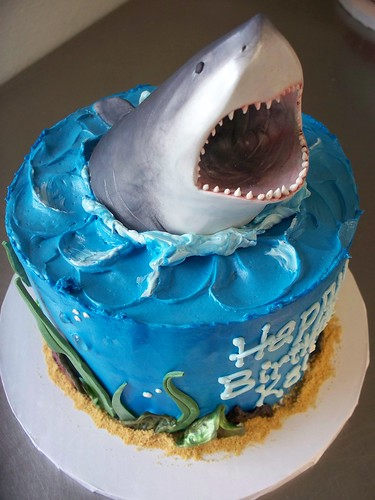 100 4153 Shark Cake Heidi P Flickr