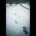 20100109 footstep