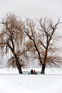Two people on a bench between trees | by Horia Varlan