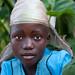 A beautiful flower - DR Congo