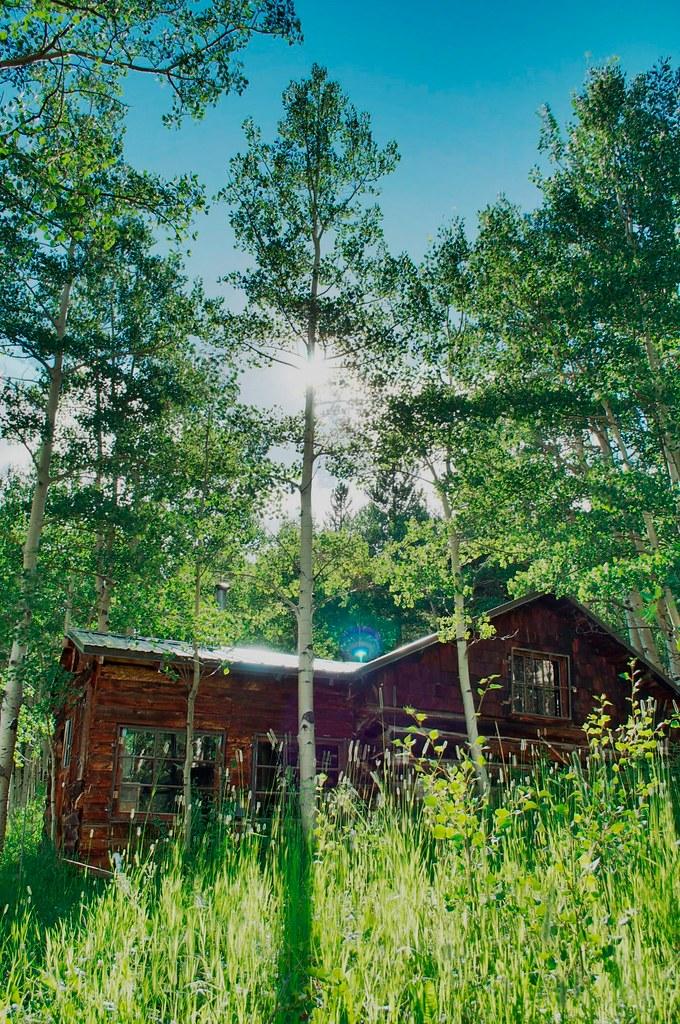 1920x1080 cabin lake ducks - photo #34