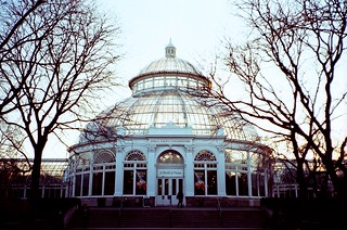Conservatory at magic hour | by Kilgub
