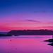 Purple Sky Sunset #2