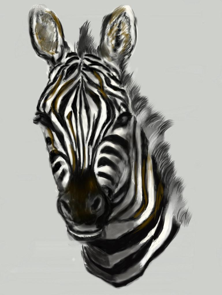 cg painting zebra head | cg painting zebra head hand draw ...