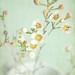 Blossom. ( Explore 17/2/2011 )
