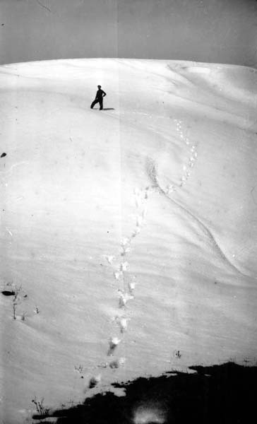 03 06 1966 Distance View Of Man Standing On Drift Of Sno