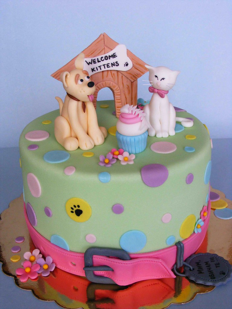 Dog And Cat Themed Birthday Cakes