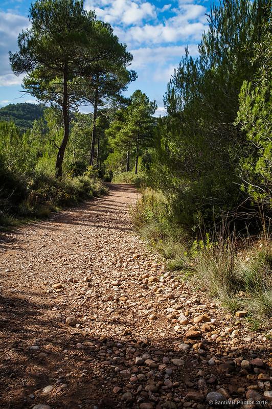El pedregoso camino de Can Maçana.