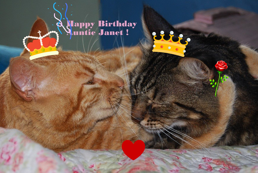 Happy birthday auntie janet hope you have a day full o