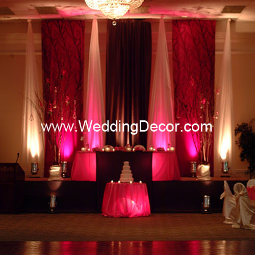 Pink And Brown Wedding Ideas: Brown & Fuchsia Wedding Reception - Backdrop