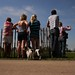 Spectators - and dogs - socialising at Badminton