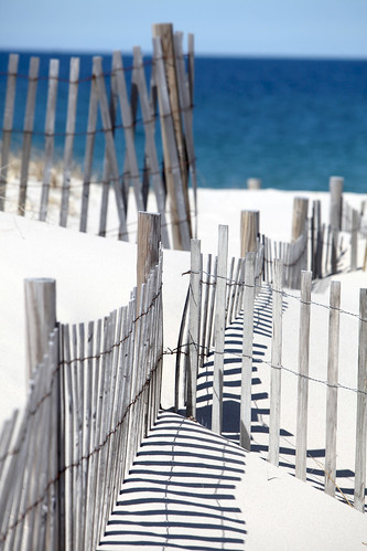 Cape Cod Snow Fence | by Chris Seufert