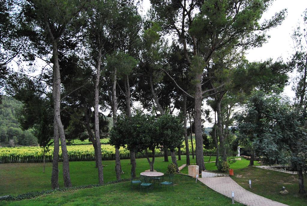 Casas Rurales Valencia Casas Rurales Valencia Jardines