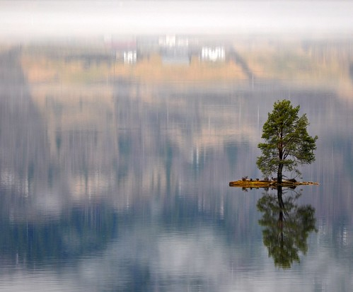 Beautiful little island with a lonely tree and a magic reflection | by Martin Ystenes - http://hei.cc