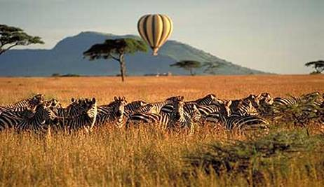 African Hotels African Game Lodges African Beach Resorts