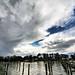 Storm on Chesapeake Bay