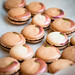 coconut-rose chocolate macarons