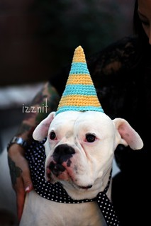 Stinky's Party hat | by Izznit