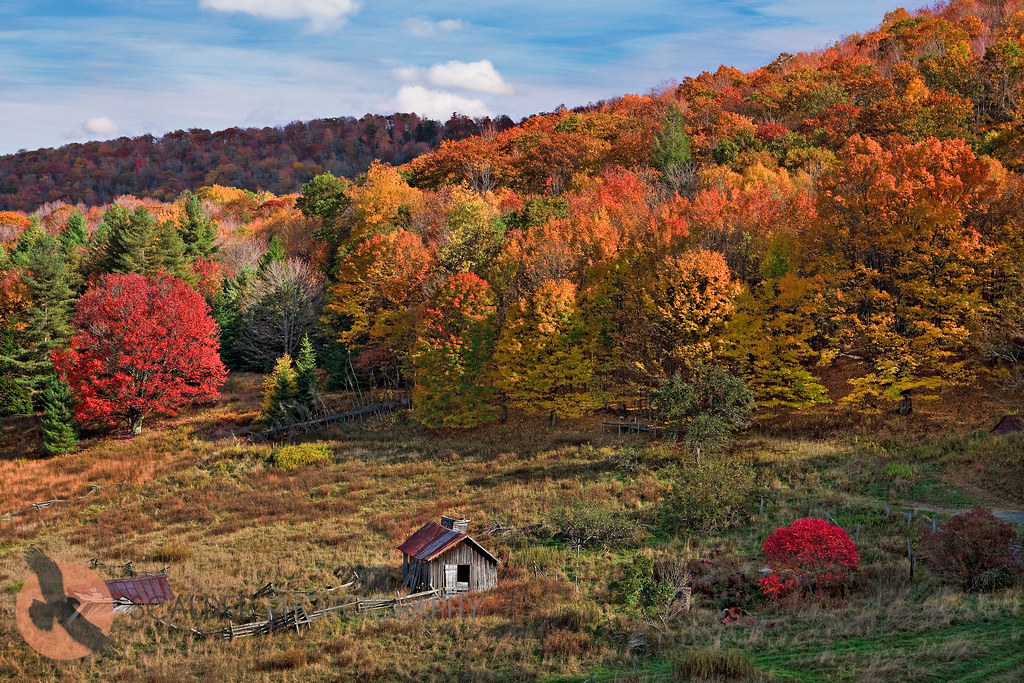 Scenic valley with fall foliage colors in west virginia co for West fall