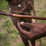 Bushman Bow And Arrow With Blood On It, Tsumkwe, Namibia