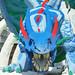 Ice Dragon, Legoland Windsor