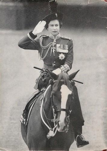 Queen Elizabeth Horses