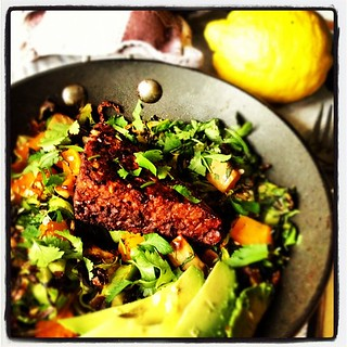 Skillet cabbage & butternut squash w/ grilled @africanvolcano tempeh & avocado. #vegan #dinner | by monica.shaw
