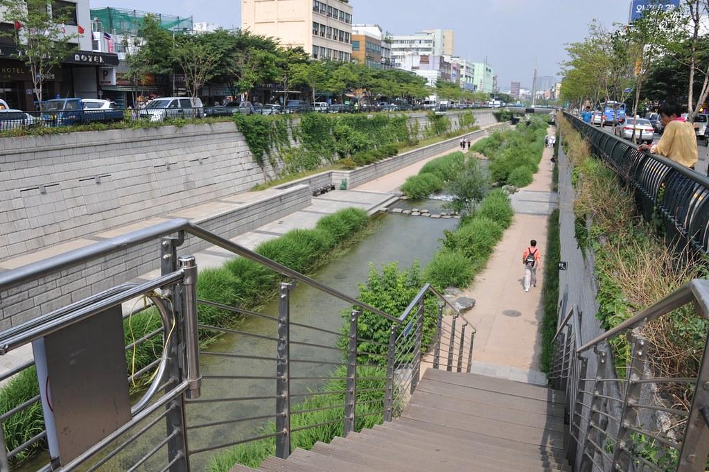 Zeleň pri rieke