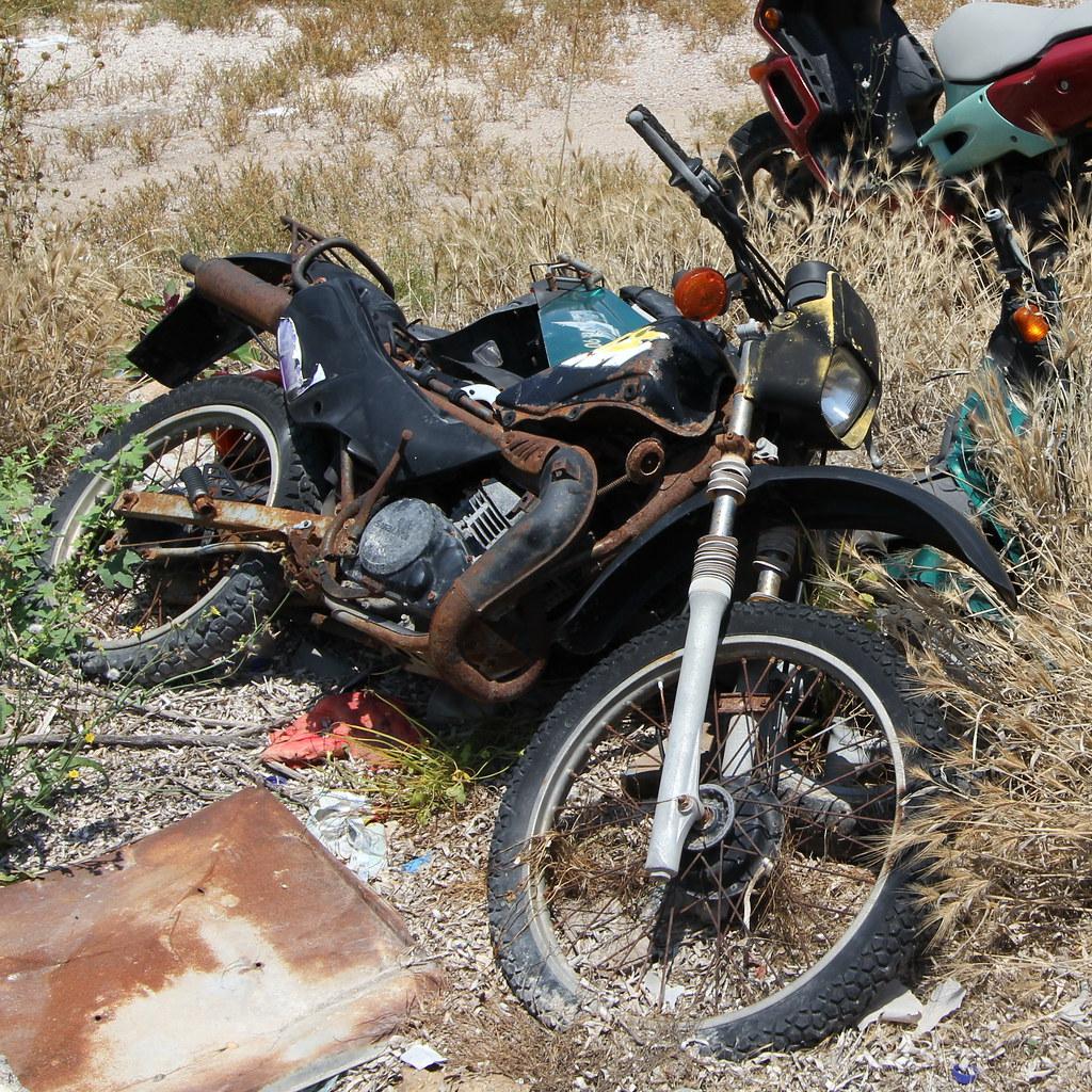 dirt biken
