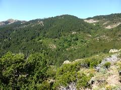 Un des deux hameaux des bergeries de Vitellile
