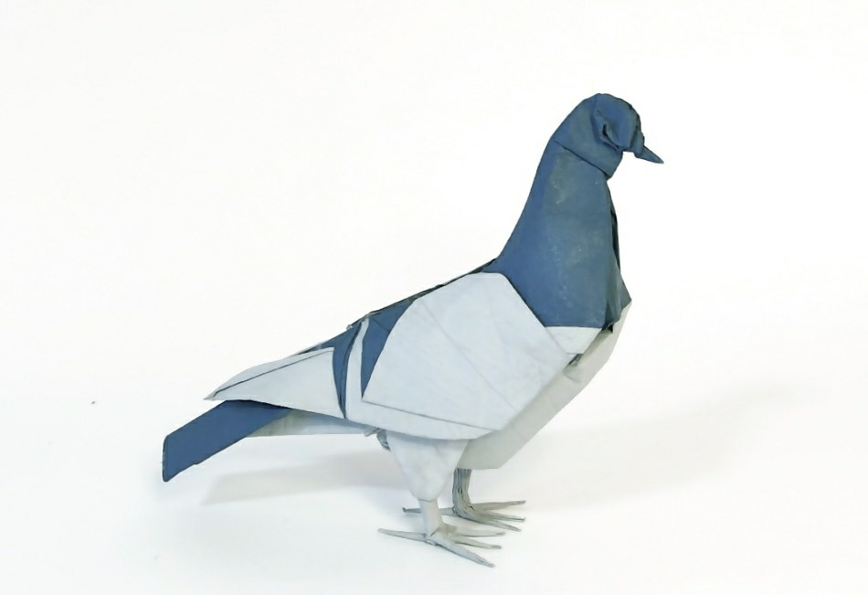 pigeon 20 from an uncut square designed and folded by