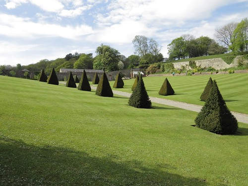 1008 Walled Garden Pyramid Topiary