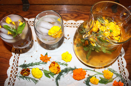 Refreshing Herbal Beverage Kit