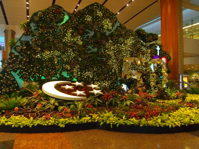 P4199465 チャンギ空港 シンガポール singapore