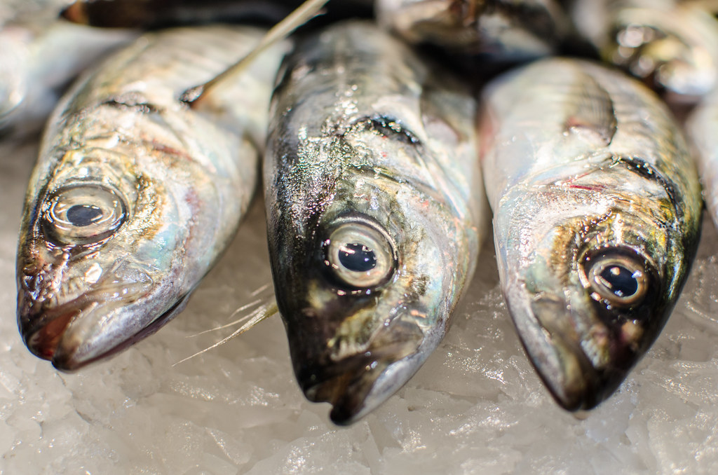 7 Ways to Know How to Buy the Freshest Fish at the Market