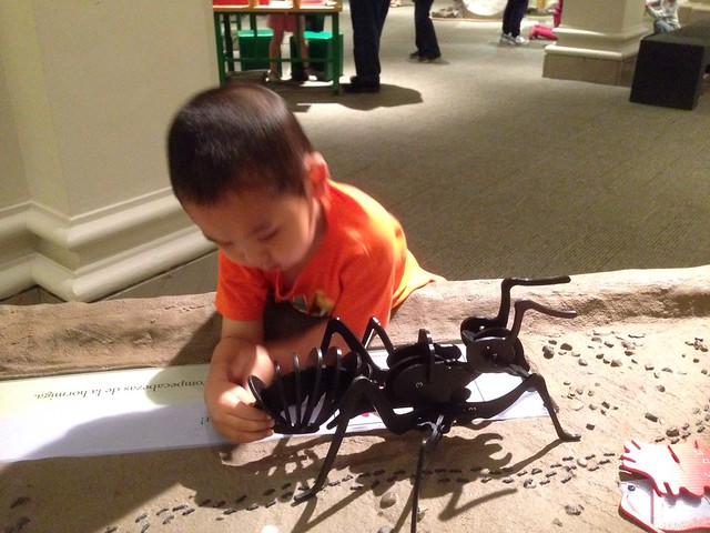 Making an ant at Animal Secrets, Carnegie Museum of Natural History