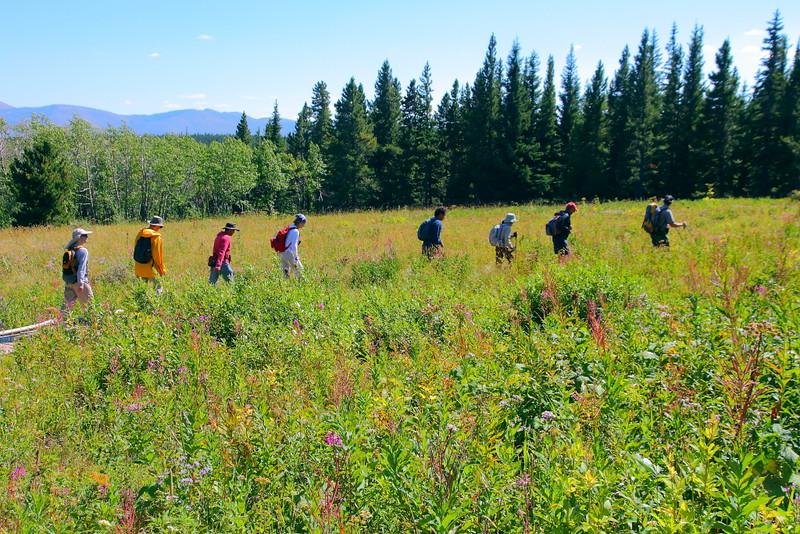 IMG_8599 Ranger-Led Firebrand Pass Hike