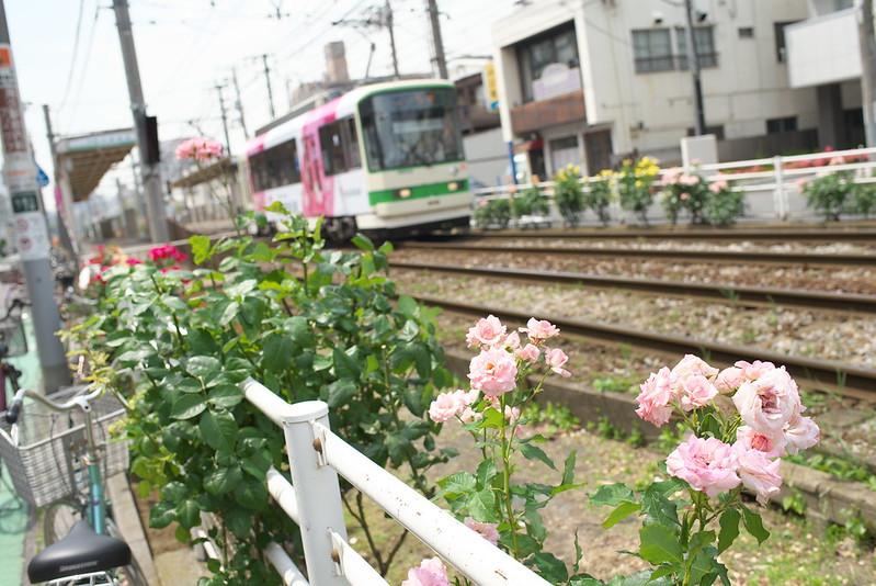Tokyo Train Story 都電荒川線 2015年5月23日